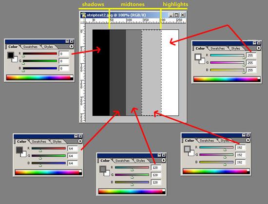 createstrip01.jpg