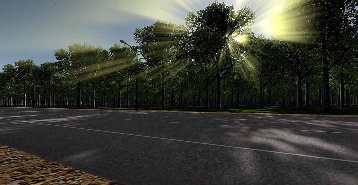 forestcity14.jpg