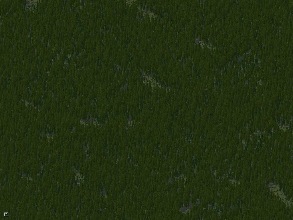 59667f531fc28_Update1-EvergreenForests.jpg.e0f600bac825af9a8f1642664638914b.jpg