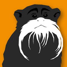 _Beardmonkey
