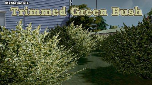 Screenshot for Trimmed Green Bush