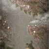 Lake Bogoria (See 1st comment for full length mosaic)